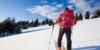 Die richtigen Ski beim Skiwandern